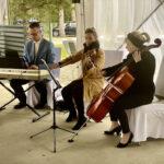 Hochzeitsmusiker